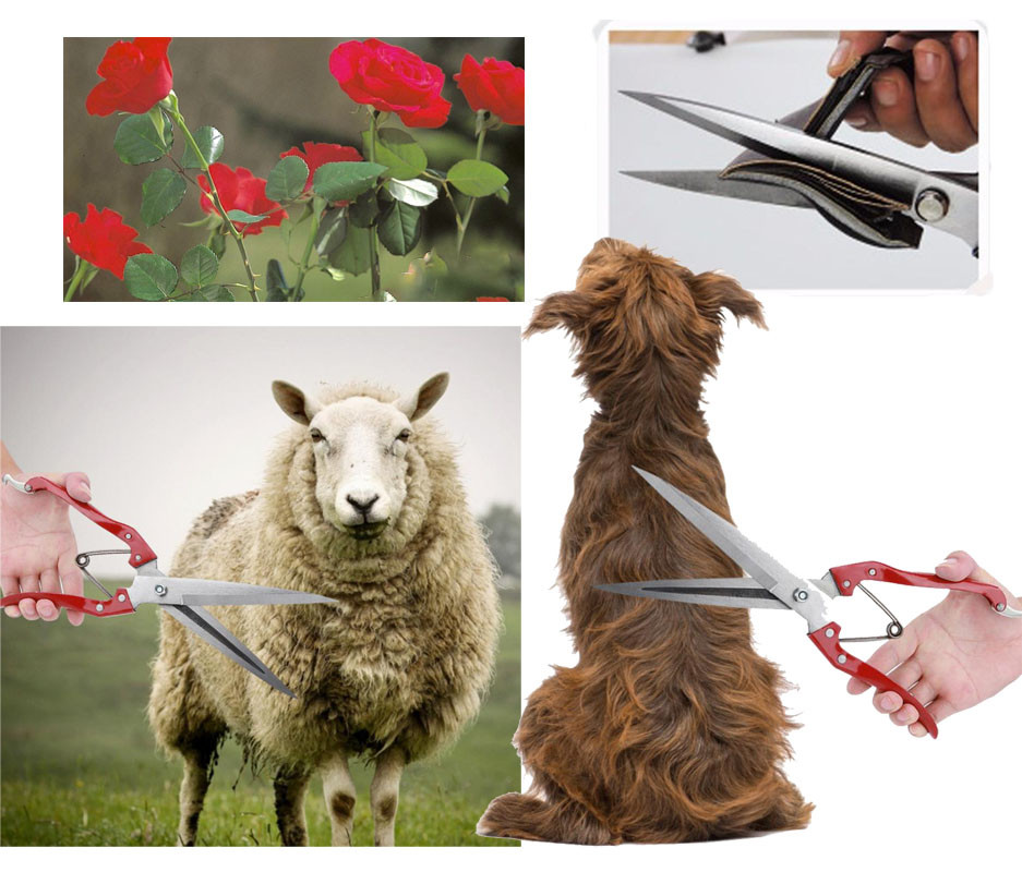 Foarfeca multifunctionala trandafiri, animale, caini, oi